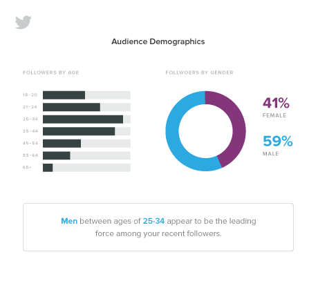 Twitter Analytics Demographics